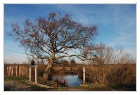 BLOG-DSC_0837-écluse plaines du Teich