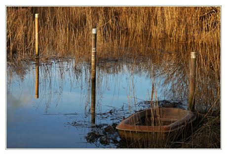 BLOG-DSC_0872-barque dans les roseaux