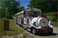 BLOG-DSC_28193-petit train domaine de Grenade