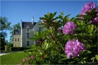 BLOG-DSC_28423-rhododendrons et château domaine de Grenade