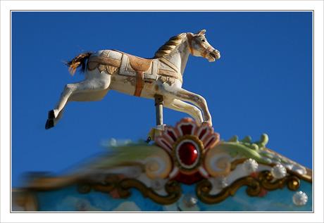 BLOG-DSC_4597-cheval manège Eyrac, Arcachon