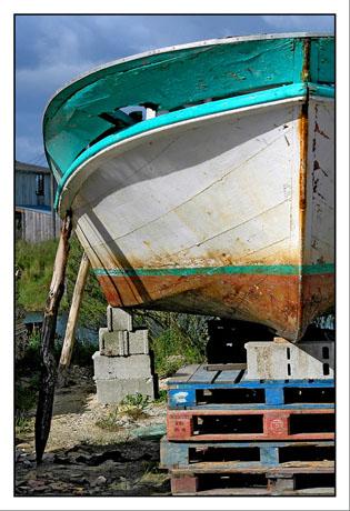 BLOG-DSC_5589-palettes & coque port Gujan