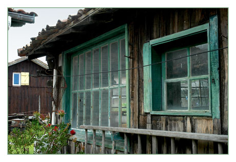 BLOG-DSC_7602-cabane fenêtres d'angle le Canon