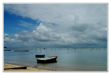 BLOG-DSC_7608-barque le Canonn nuages, île aux oiseaux