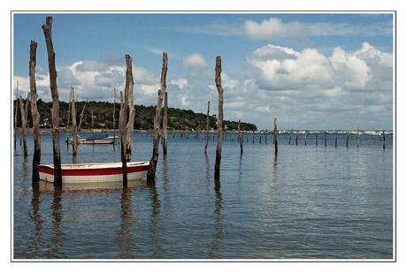 BLOG-DSC_7632-piquets, barque & rivage Piraillan