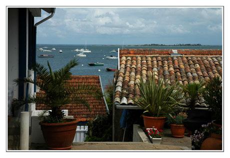 BLOG-DSC_7636-toits Piraillan & île aux oiseaux
