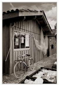BLOG-DSC_7888-cabanes & vélo écomusée Taussat sépia