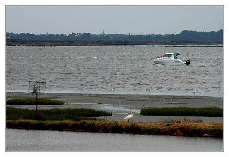 BLOG-DSC_8664-plaisance Audenge et égilse du Teich