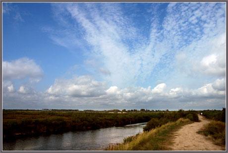 BLOG-DSC_8699-sentier littoral Audenge