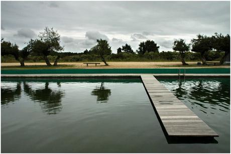 BLOG-DSC_9557-bassin & ponton Audenge