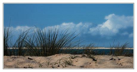 BLOG-DSC_9611-rec-oyats, Arguin, océan