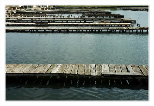 BLOG-DSC_9671-pontons bassin Barbotière