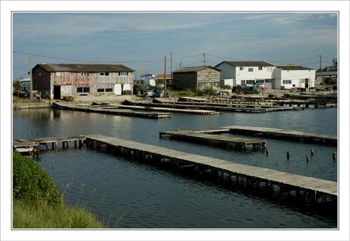 BLOG-DSC_9677-hangars, bassin & pontons Barbotière