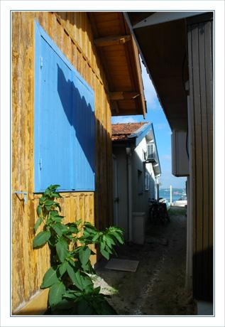BLOG-DSC_9976volet bleu & -perspective Bassin