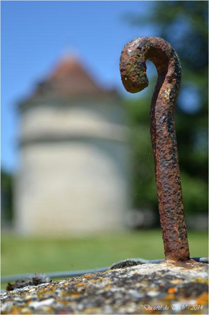 BLOG-DSC_28533-parc château de la Brède