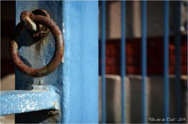 BLOG-DSC_28728-anneau grille parc mauresque