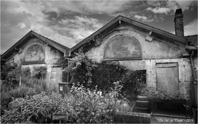 BLOG-DSC_28931-jardin des foudres Belcier des bains-douches N&B