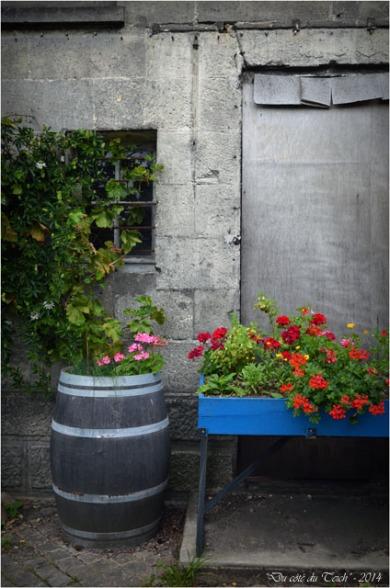 BLOG-DSC_28932-jardin des foudres Belcier des bains-douches N&B