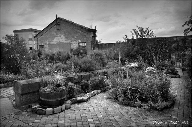 BLOG-DSC_28937-jardin des foudres Belcier des bains-douches N&B2