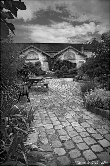 BLOG-DSC_28938-jardin des foudres Belcier des bains-douches N&B