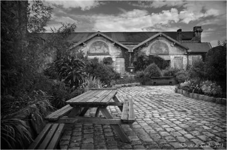 BLOG-DSC_28940-jardin des foudres Belcier des bains-douches N&B2