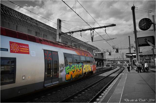 BLOG-DSC_28983-TER Languedoc Roussillon gare Bordeaux St Jean N&C
