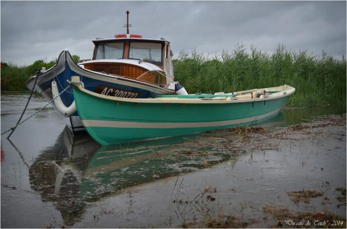 BLOG-DSC_29393-Argo et la Hume retour régate des maires 2014 Leyre le Teich