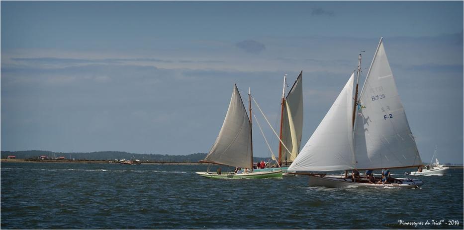 BLOG ASSO-DSC_29870-régate fêtes de la mer Arcachon 2014