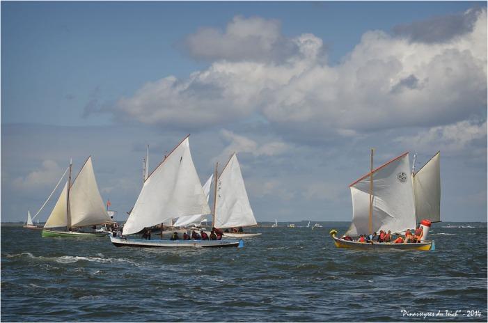 BLOG ASSO-DSC_29906-la Teychine régate fêtes de la mer Arcachon 2014
