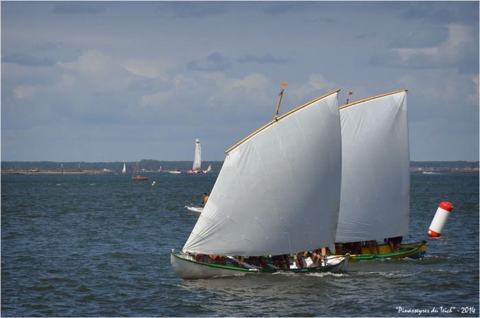 BLOG ASSO-DSC_29948-régate fêtes de la mer Arcachon 2014