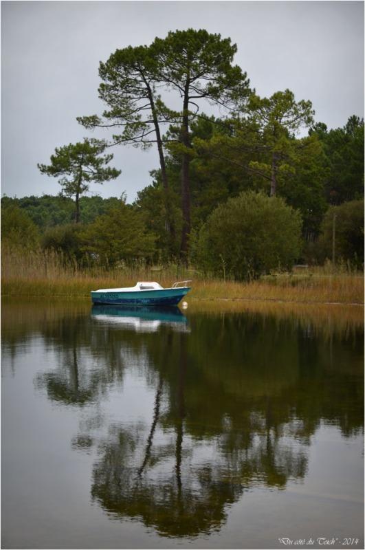 BLOG-DSC_31537-bateau bleu matin d'automne Sanguinet