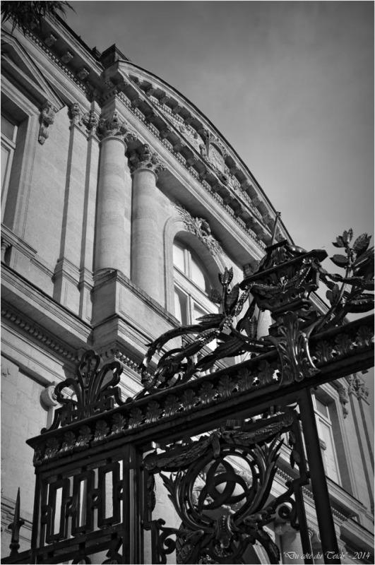 BLOG-DSC_31811-grille musée des beaux arts et jardins mairie Bordeaux N&B