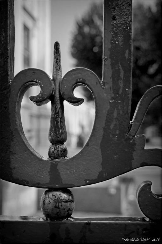 BLOG-DSC_31812-grille musée des beaux arts et jardins mairie Bordeaux N&B