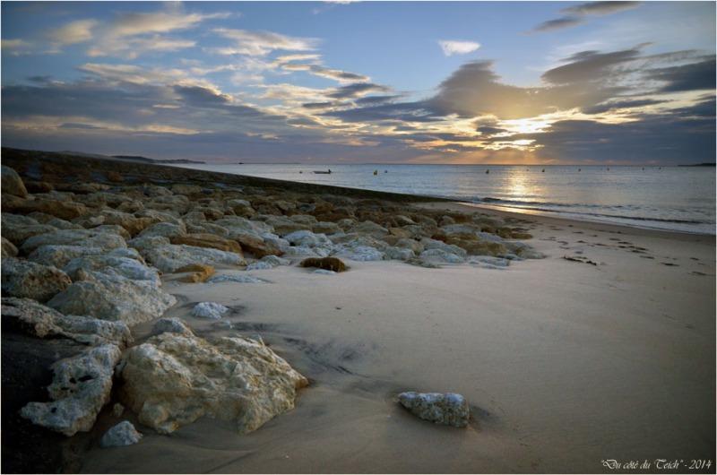 BLOG-DSC_31903-rivage Pyla sur mer