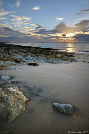 BLOG-DSC_31904-rivage Pyla sur mer
