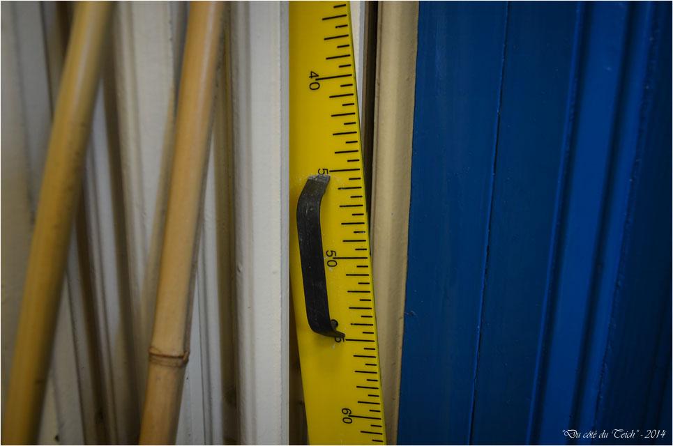 BLOG-DSC_32471-règle bambous et radiateur