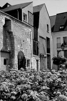 BLOG2-81-IMG1822-vieux Tours