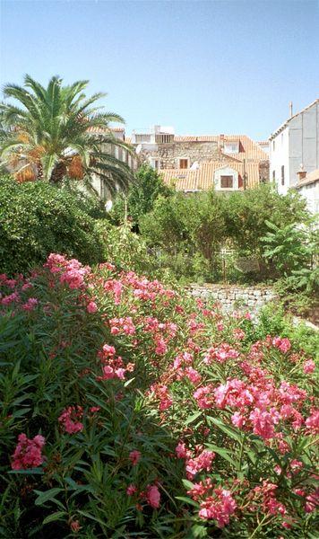 Dubrovnik_021