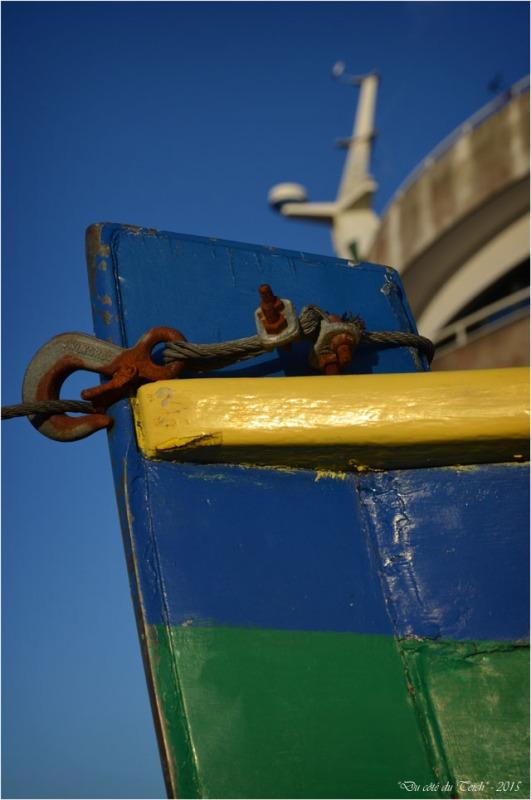 BLOG-DSC_33520-yole de bantry la Jolie Barbotière lycée de la mer