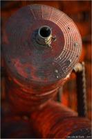 BLOG-DSC_34311-collecteurs à coupelles