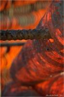 BLOG-DSC_34316-collecteurs à coupelles 2