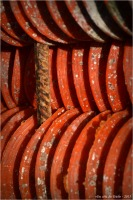 BLOG-DSC_34317-collecteurs à coupelles