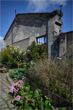 BLOG-DSC_34570- jardin Bains Douches Belcier