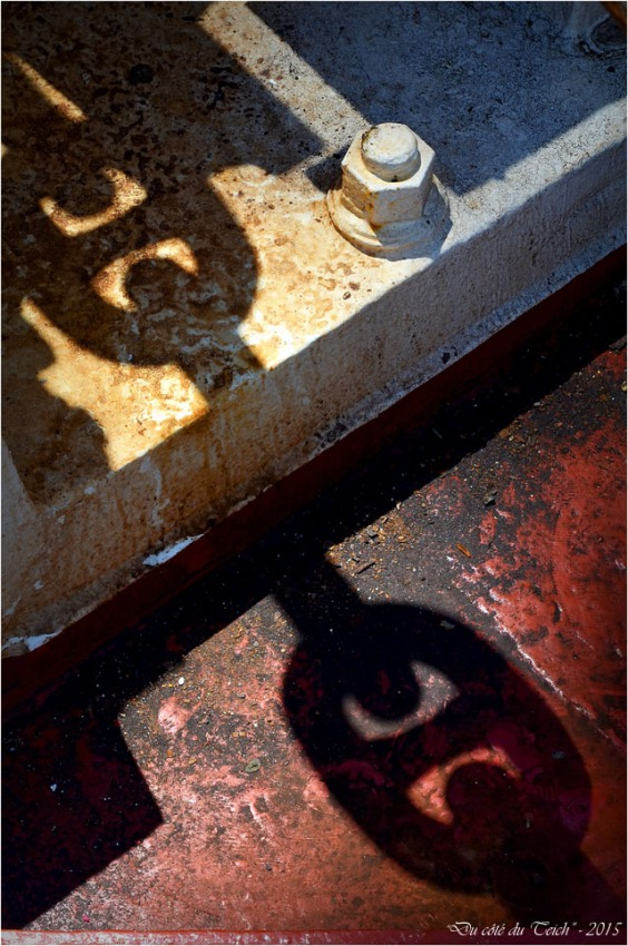 BLOG-DSC_35485- le Belem - Bordeaux fête le fleuve 2015