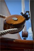 BLOG-DSC_35597- le Belem - Bordeaux fête le fleuve 2015