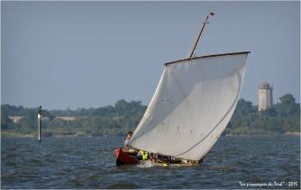 BLOG ASSO-DSC_37813-Voltigeuse régate du Teich 2015