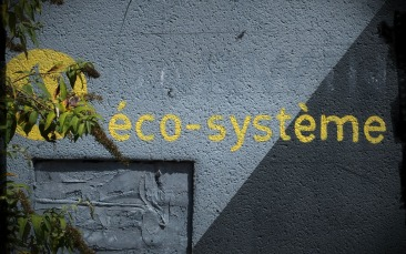 blog-p8200892-pa03-eco-systeme-darwin.jpg