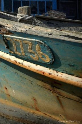 BLOG-DSC_37978-2-chaland et cabane port Meyran