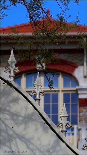 blog-p9091344-portillon-villa-la-tosca-taussat.jpg