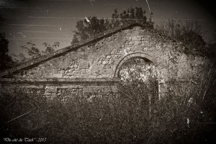 blog-pa011604-ruines-st-louis-de-montferrand-nb-pa07.jpg